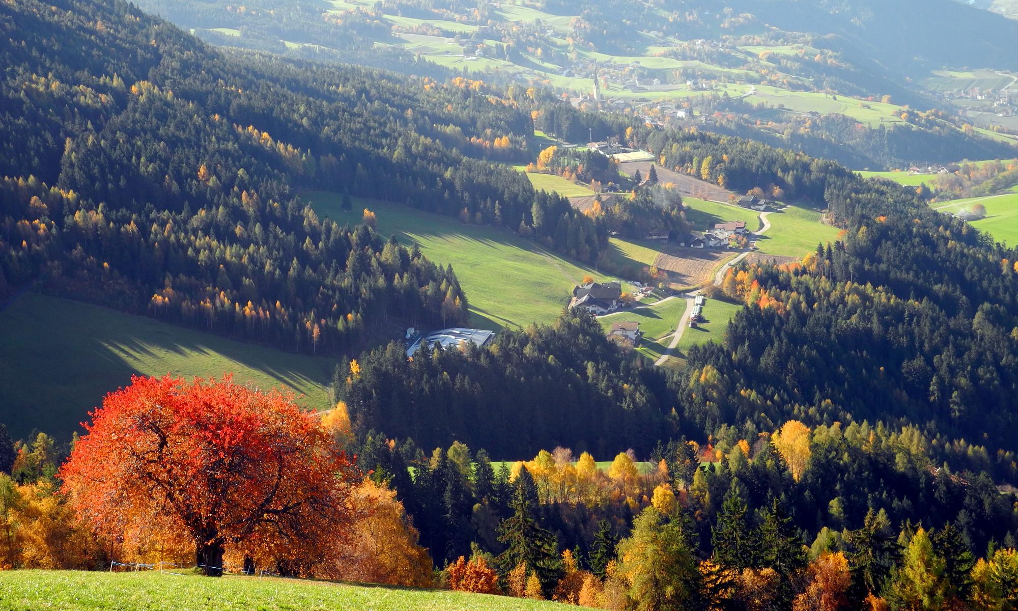 Herbst und Törggelen im Eisacktal – Wandern in Lüsen
